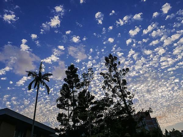 L1000457    高積雲