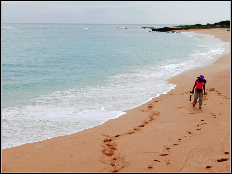 L1980705   網垵沙灘