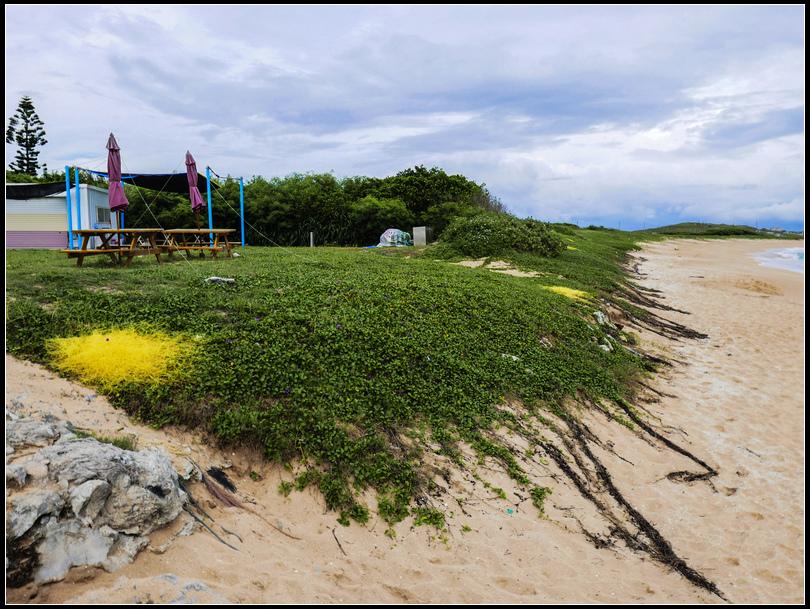 L1980714   網垵沙灘