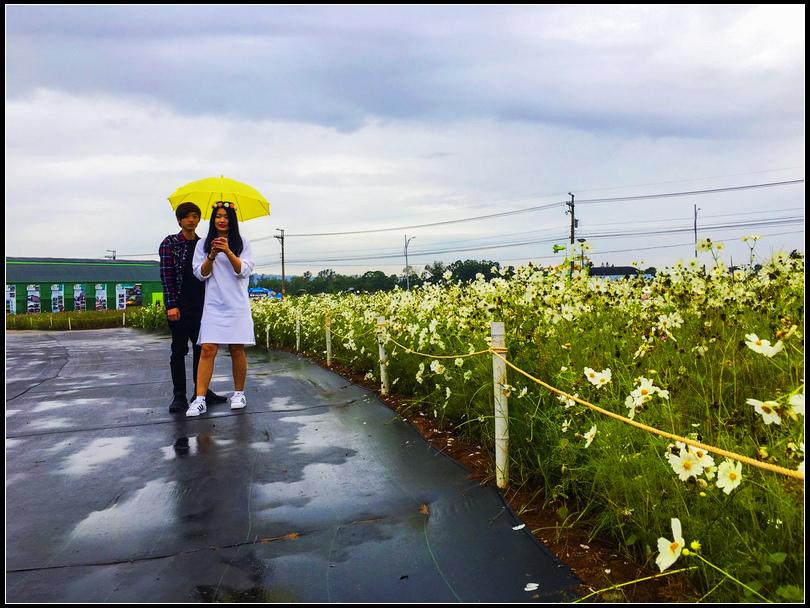 20161122 秋季旅遊_427