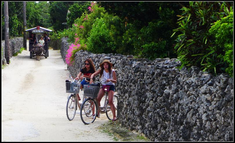 10.12  6竹富島上搭牛車或騎單車S