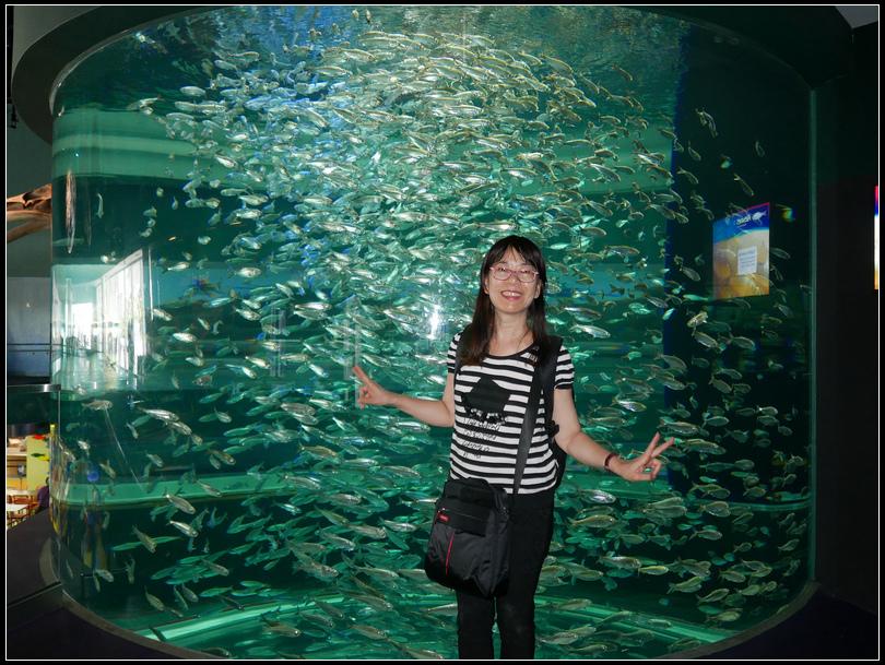 L2180822   水族館