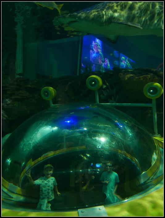 L2190081 水族館