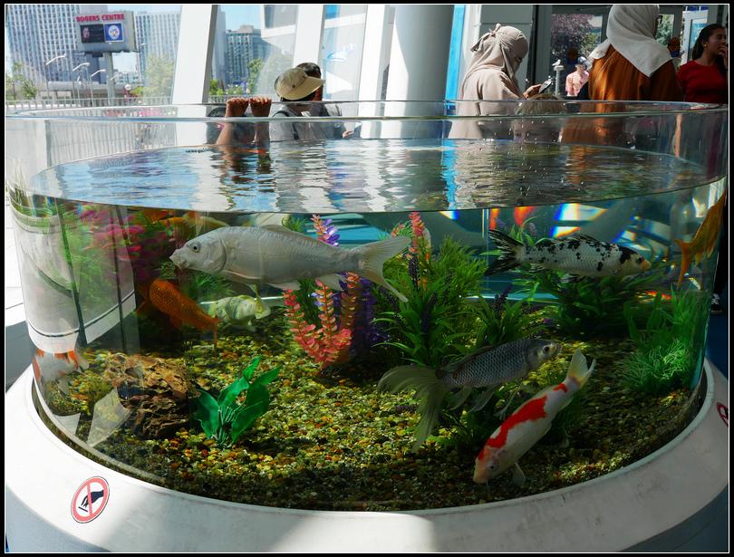 L2190101 水族館