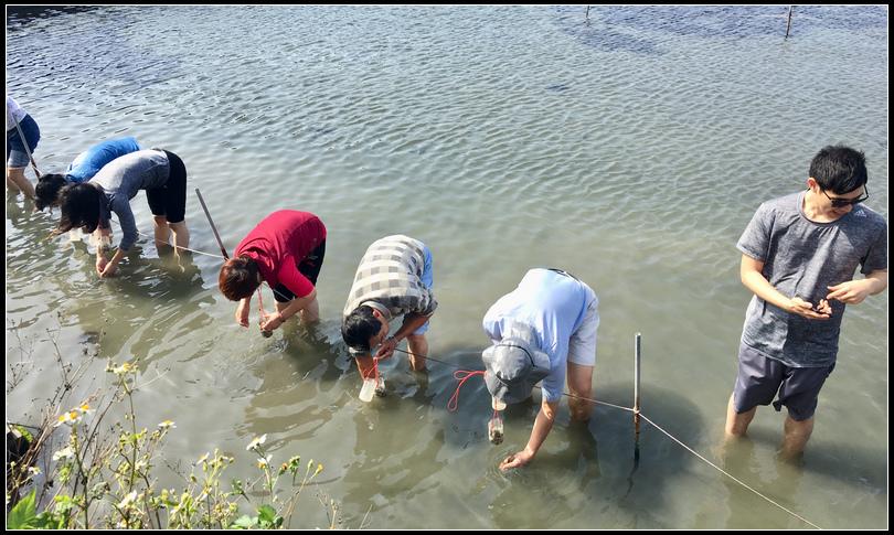 IMG_4105~photo-full 魚塭