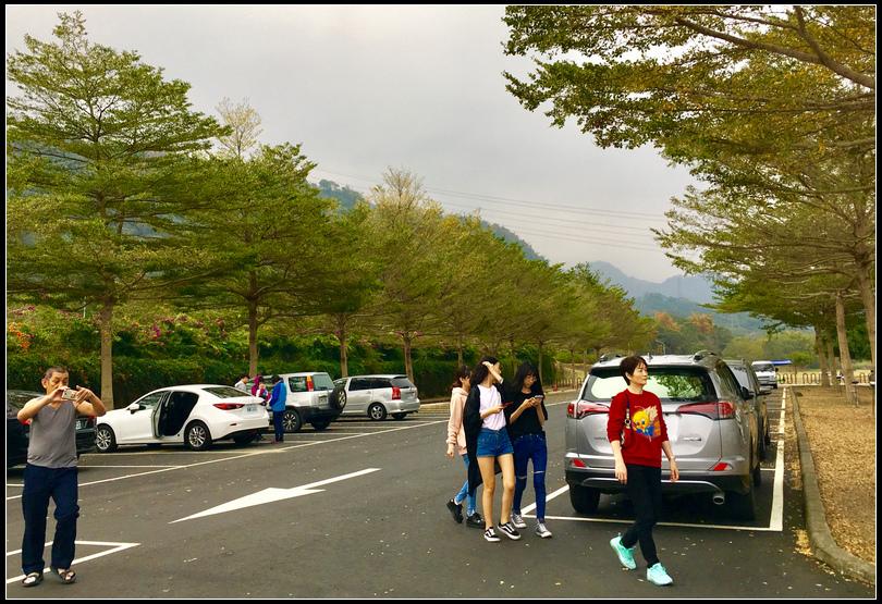 IMG_4156~photo-full 愛情大草原