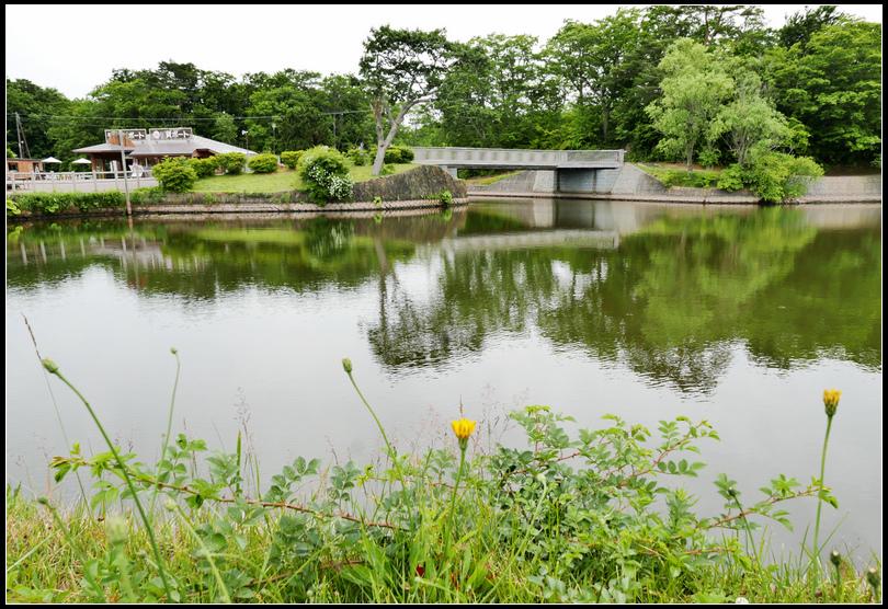 L2310531  大沼公園