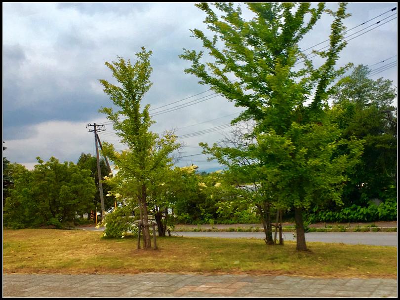 IMG_E4978  札幌