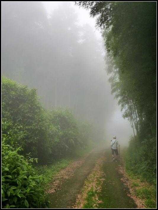 L2330516    霧之道.jpg