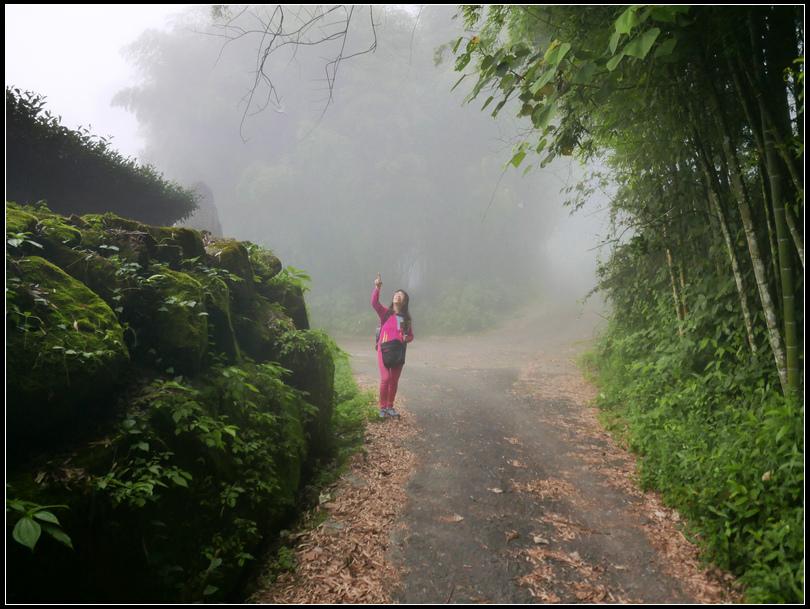 L2330526   霧之道.jpg