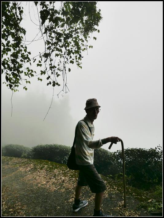 L2330536  霧之道.jpg