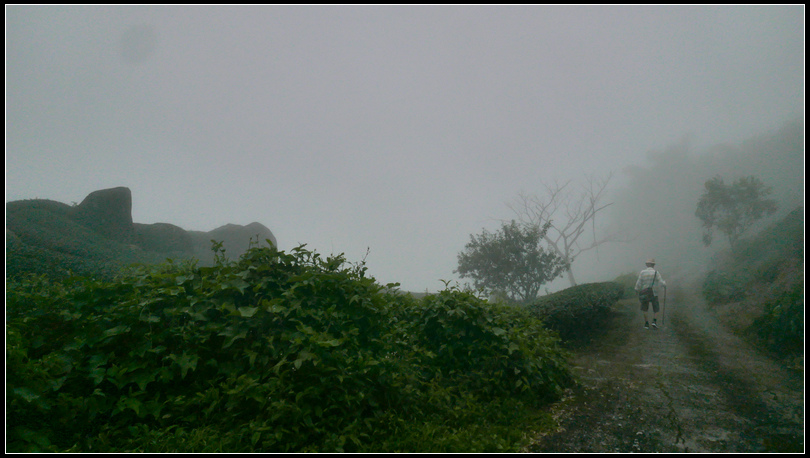 L2330540  霧之道.jpg