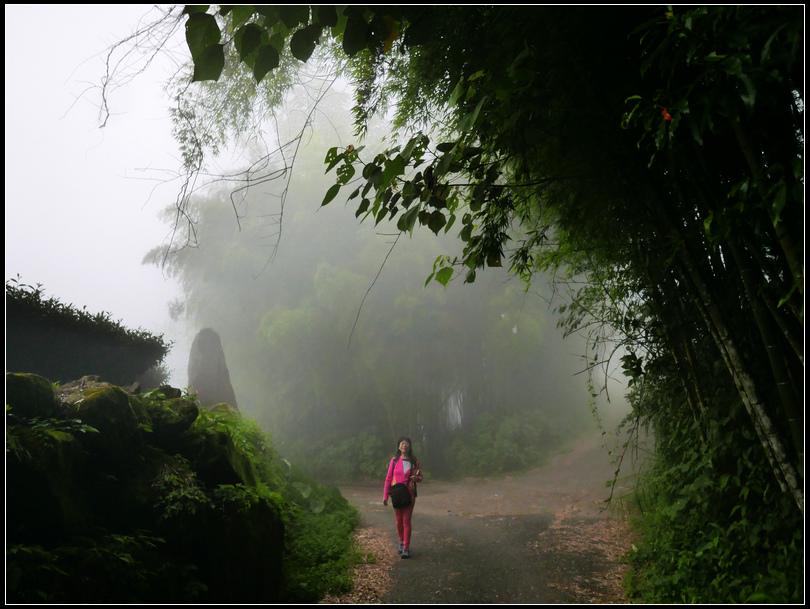 L2330529  霧之道.jpg