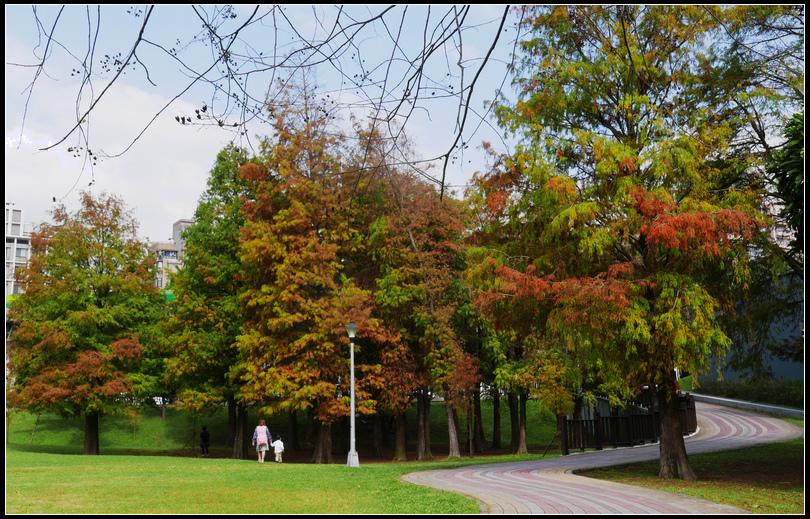 L2360307大湖公園.jpg