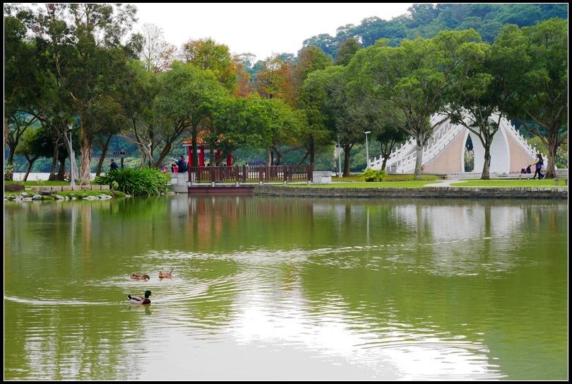 L2360376大湖公園.jpg