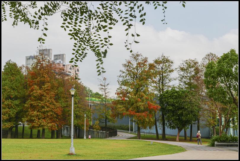 L2360401 大湖公園  S.jpg
