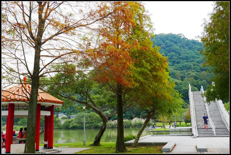 L2360465大湖公園.jpg