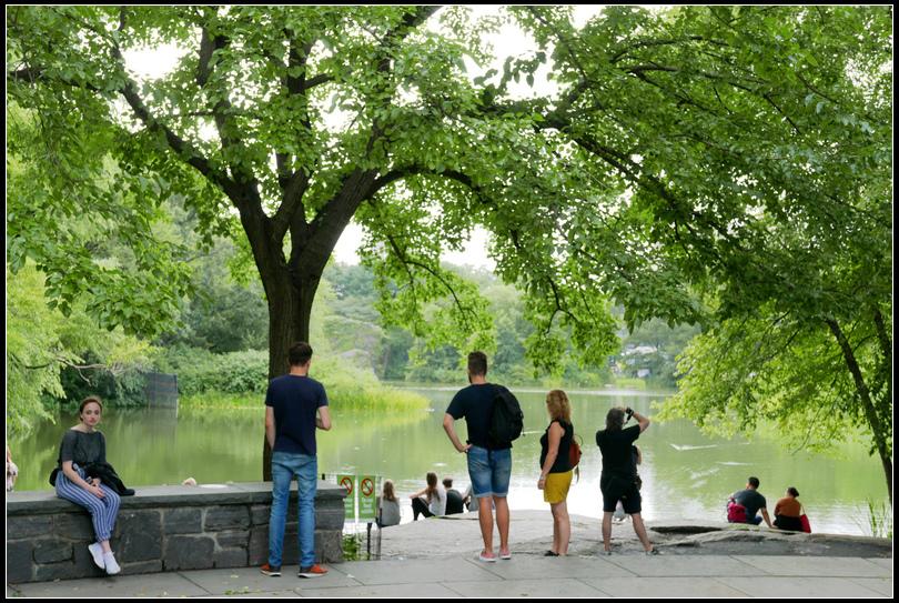 L2210725 中央公園.jpg
