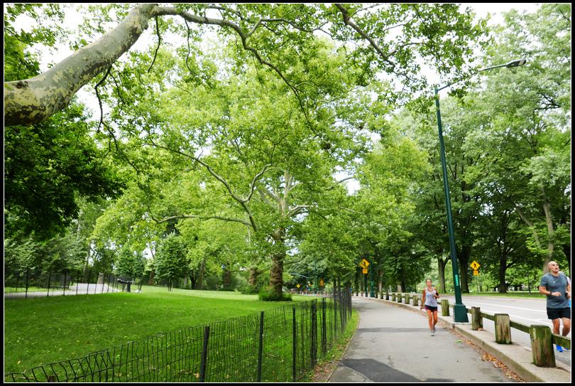 L2210750 中央公園.jpg