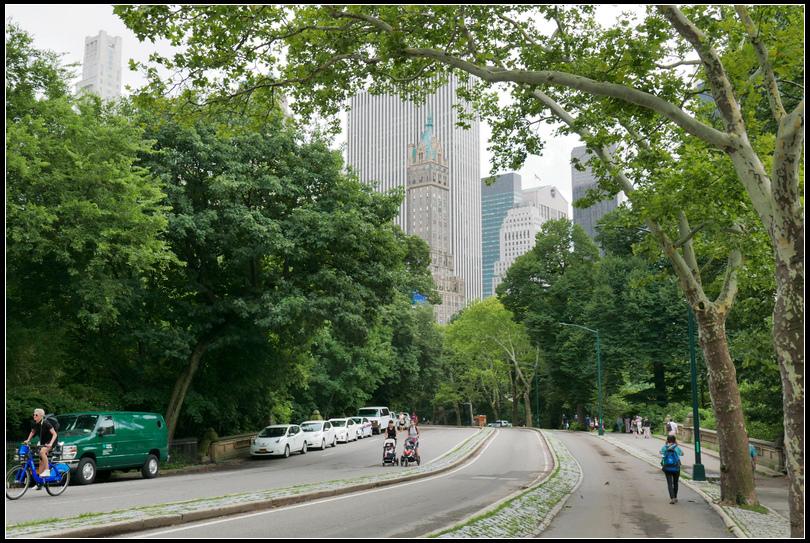 L2210761 中央公園.jpg
