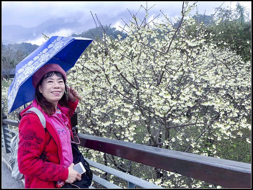 2020122農曆春節_200210_0398 寒溪呢S.jpg