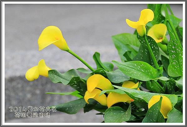 2014臺北花卉展207