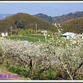 2014春遊苗栗D2089