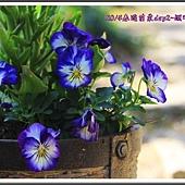 2014春遊苗栗D2110