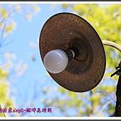 2014春遊苗栗D2121