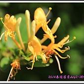 2014春遊苗栗D2146