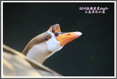 2014春遊苗栗D2217