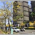 賞花趣。台南201514