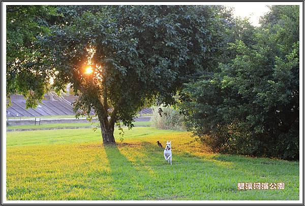 雙溪河濱公園201407