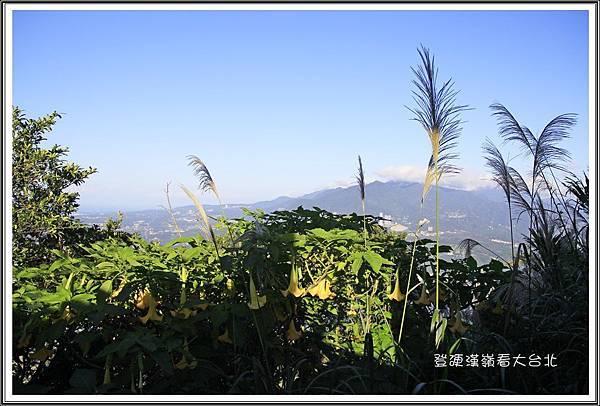 登硬漢嶺看大台北31