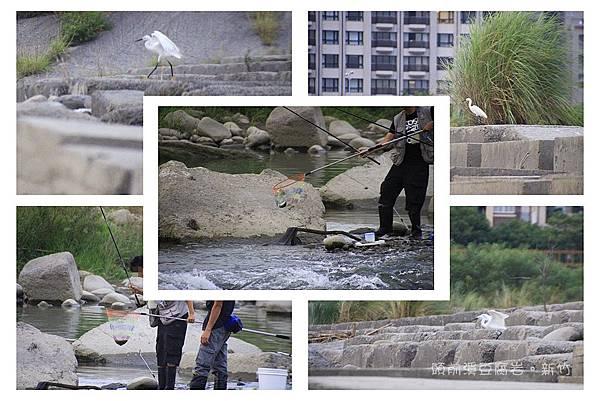 走訪頭前溪豆腐岩24