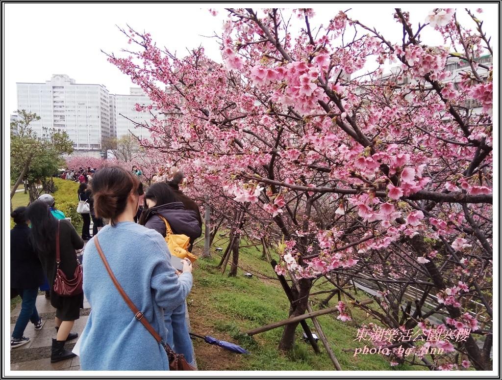 20170223東湖樂活公園寒13
