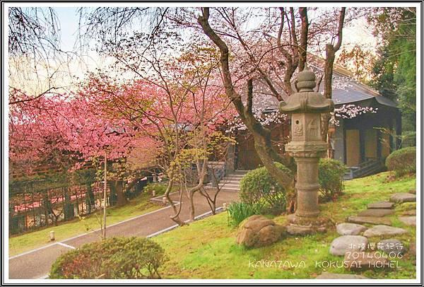 2014北陸櫻花紀行篇D2040
