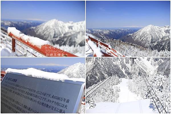 2014北陸櫻花紀行篇D3035