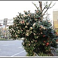 2014北陸櫻花紀行D4110
