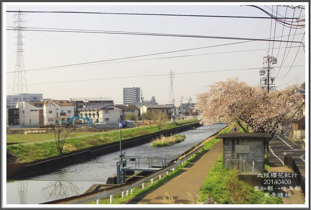 2014北陸櫻花紀行D5005
