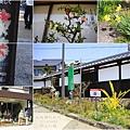 2014北陸櫻花紀行D5024