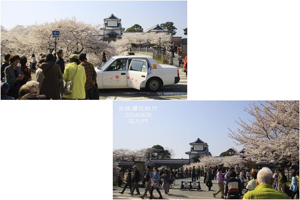 2014北陸櫻花紀行D5036