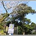 2014北陸櫻花紀行D5045