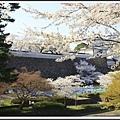 2014北陸櫻花紀行D5052