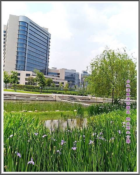 台北遠東通訊園區 綠生態北公園
