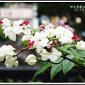 林本源園邸2012120600