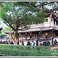林家花園2014021606.JPG