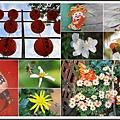 林家花園2014021610.jpg