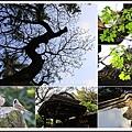 林家花園2014032301.jpg