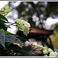 林家花園2014122603.JPG